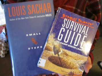 small steps louis sachar study guide